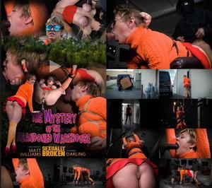 SEXUALLY BROKEN: Feb 15, 2016   Darling   Matt Williams   Jack Hammer