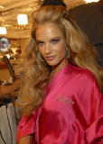 th_96540_fashiongallery_VSShow08_Backstage_AlessandraAmbrosio-14_122_751lo.jpg