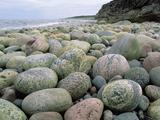 Wallpaperi Th_57049_Green_Point2_Gros_Morne_National_Park3_Newfoundland2_Canada_122_873lo